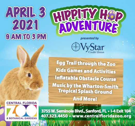Hippity Hop Adventure